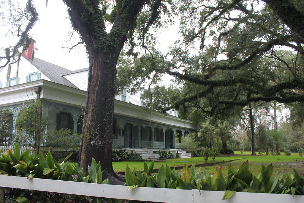 A plantation home with elaborate gatework sits underneath draping trees
