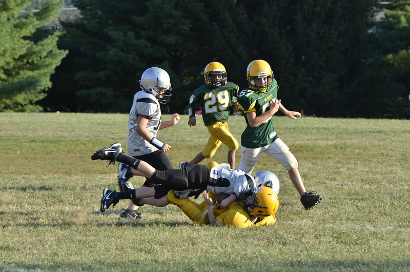 Wildcats vs Raiders Scrimmage 054.JPG