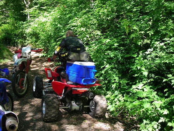 06-07-16 Woodland Trails