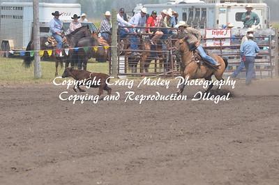 PERF CALF ROPING 07-04-15