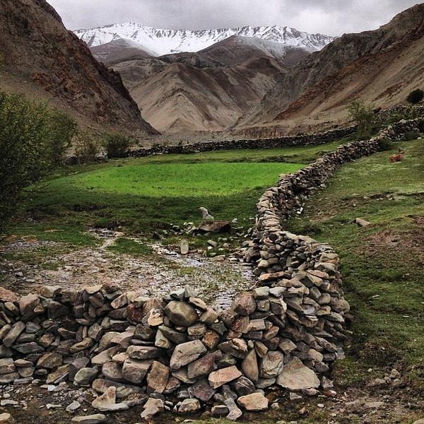 Summertime snowcaps in the Himalayas -- Yurutse, Ladakh #India