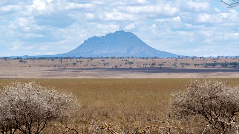 Tanzania-Tarangire-National-Park-Safari-14.jpg