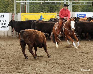 ZIRNHELTS 2017 $25K NOVICE HORSE