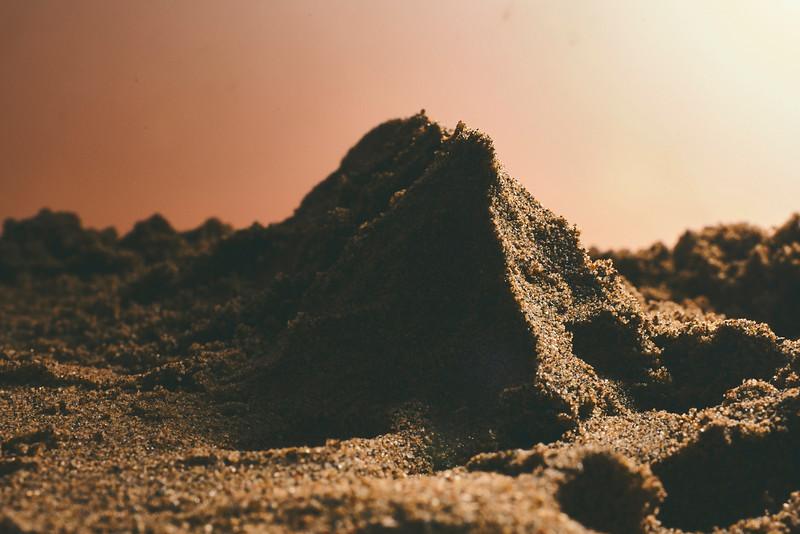2020-12-05 Jaybird Sand Still Life2325.jpg
