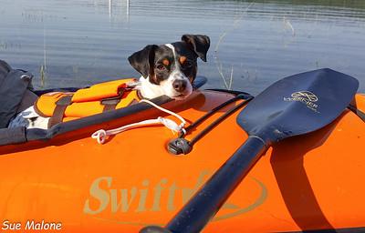 08-02-2016 Morning Kayak on Lake Roosevelt