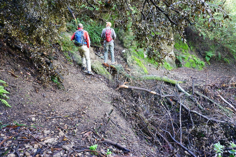 20160218081-Gabrielino Trail Scouting.JPG