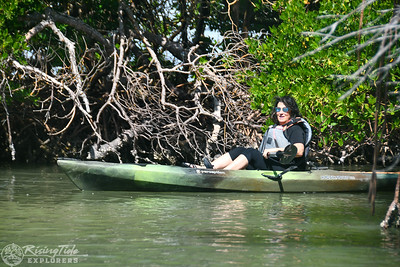 1230PM Mangrove Tunnel Kayak Tour - Molnar, Lessard & Brown