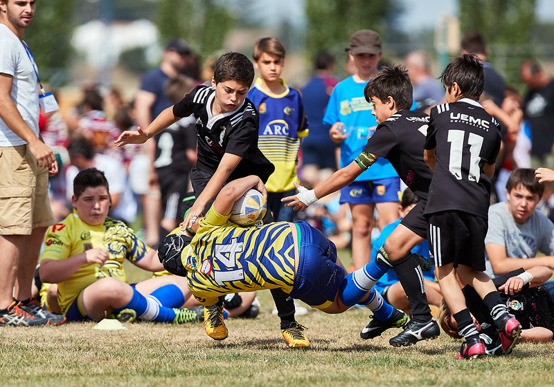 (Sub12 - 5/8 Oro) URO Rugby Alcorcón vs CR El Salvador B: 5-15