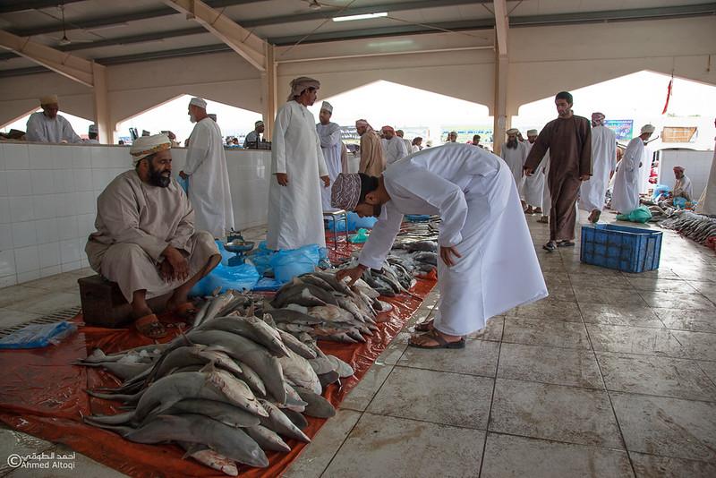 Fish market (5).jpg