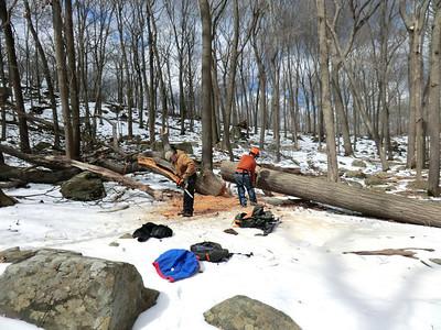 Trailwork Spring 2013