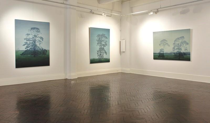 2007 The Pines, Flinders Lane Gallery, Melbourne