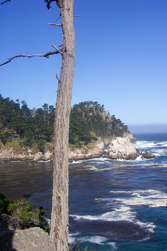 another cove.jpg