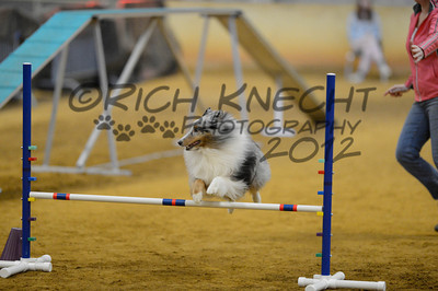 """Saturday Excellent Standard 16"""" Group B"""