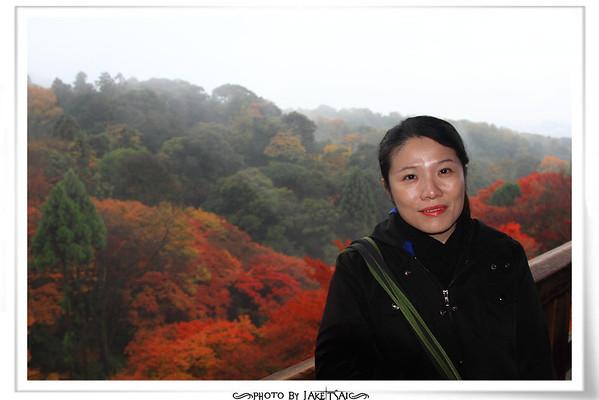 20121130 京阪神 D345 京都