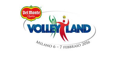 VolleyLand 2016