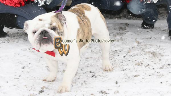 2011 Hitmen Photoshoot