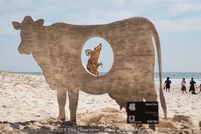 2019 Swell Sculpture Festival - PeopleArtPlace