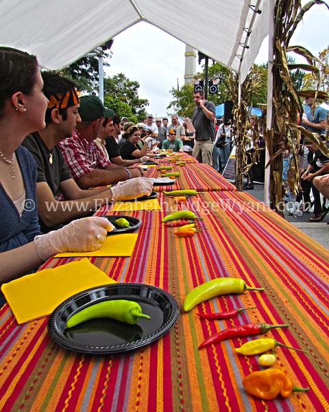 Chile Pepper Fest 2011