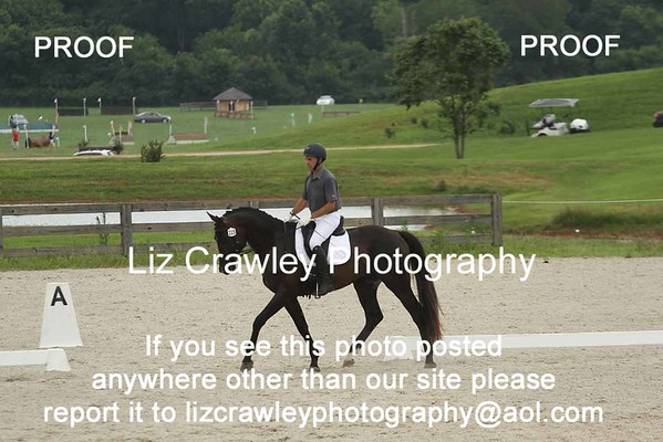 ANDREW PALMER AND DICKENS OF HOLME RANCH #215