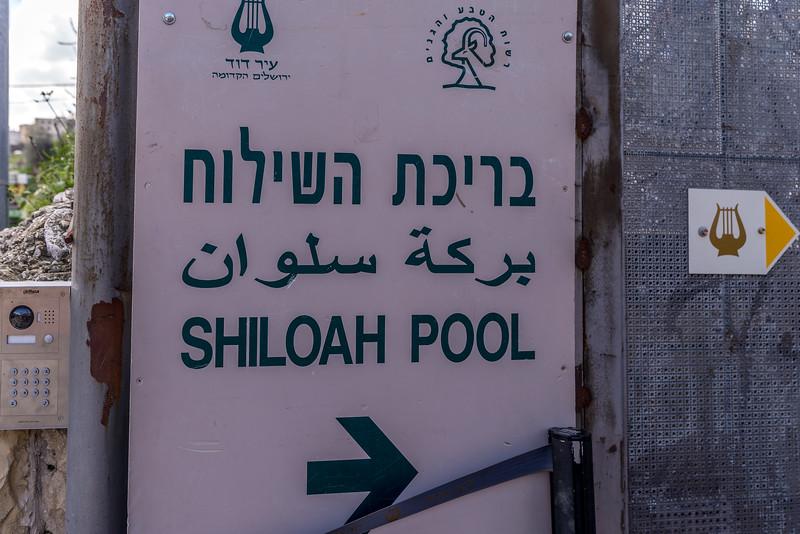 Shiloah pool