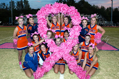 Cheerleaders at Pink out 14 Oct 2016
