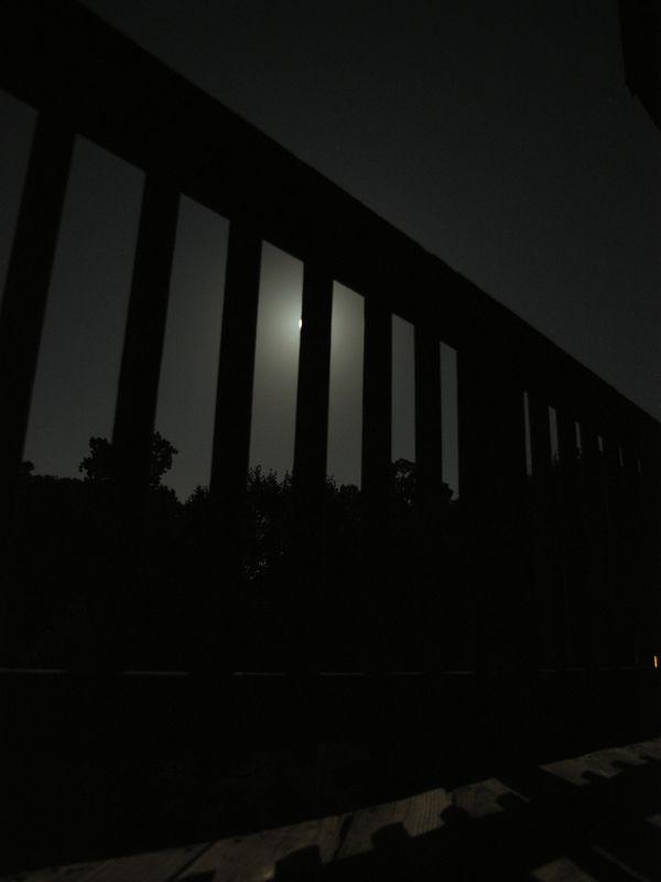 p7310548.jpg
