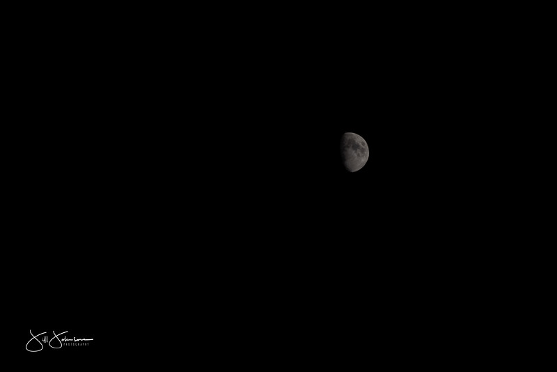 moon-0785.jpg