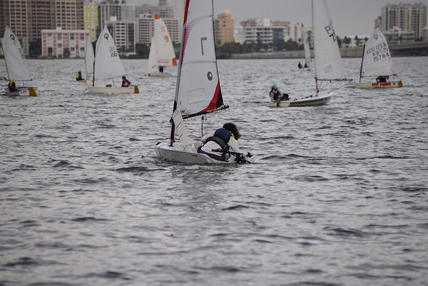 Sarasota Youth Sailing