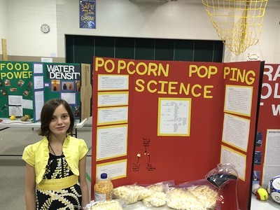 Kailin's science fair
