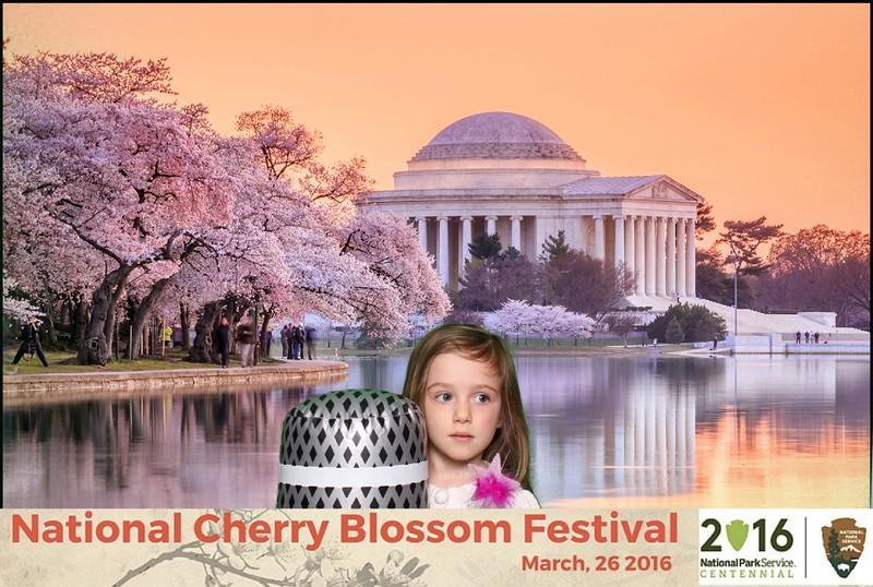 Boothie-NPS-CherryBlossom- (23).jpg