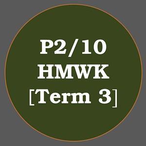 P2/10 HMWK T3