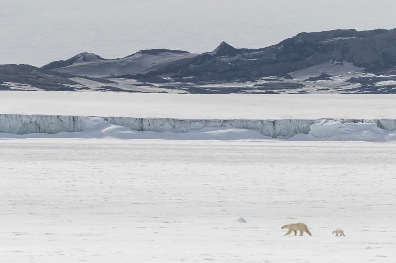Inspirato-Arctic_Expedition18-05-Bear_Fjord-2301.jpg