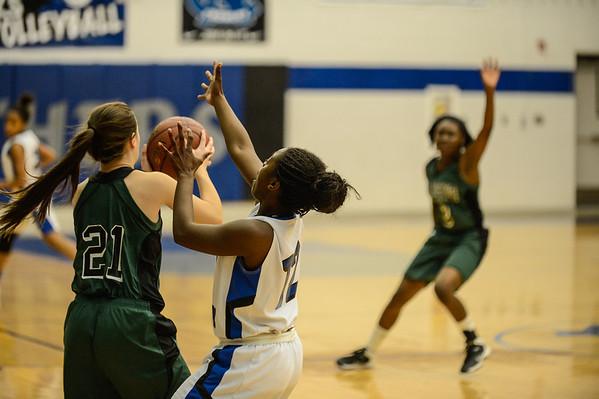 Basketball Girls JV vs  Arlington Colts 12-13-13-14 - Copy