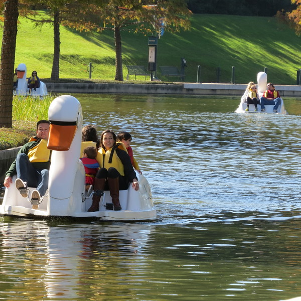 paddle ducks.JPG