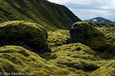 starting the trek: Eldgja to the hut at Alftavotn