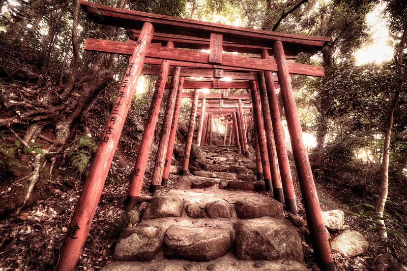AlikGriffin_Yutoku_Inari_Torii.jpg
