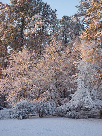 02-12 - Snowfall - Smyrna, GA