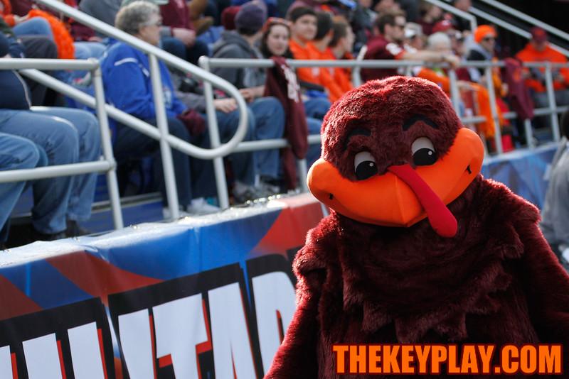 The HokieBird patrols the sidelines during the game. (Mark Umansky/TheKeyPlay.com)