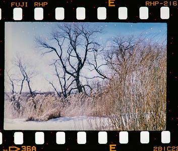 Zorki - Second set shot with Fuji Fujichrome Velvia RVP 50 Slide Film - expired 1994