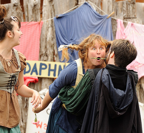 Sherwood Forest Faire  2014