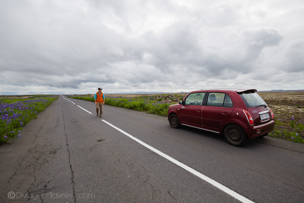 Roadside sightseeing in Iceland