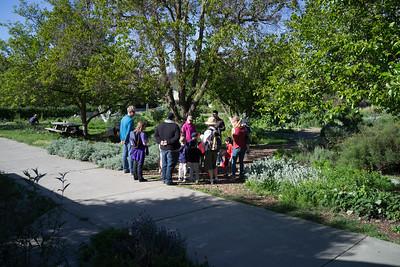 UCD Children's Garden