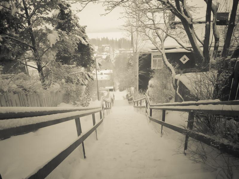 tampere village stairs.jpg