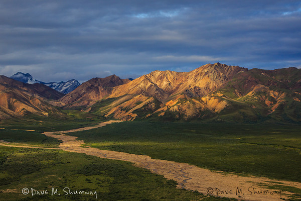 Denali National Park, July, 2012