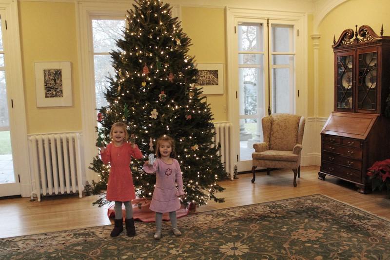 Ornaments-Choate House 059.JPG