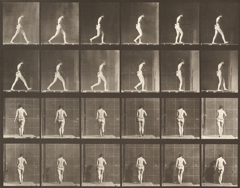 Nude woman walking with right elbow bent (Animal Locomotion, 1887, plate 20)