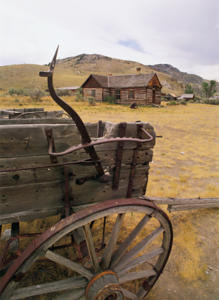 mule-drawn-carriages-are-needed-jefferson-pilgrimage-parade-slated