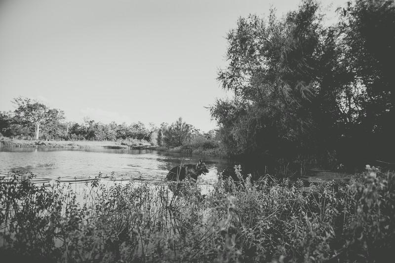20140831-camping-66.jpg