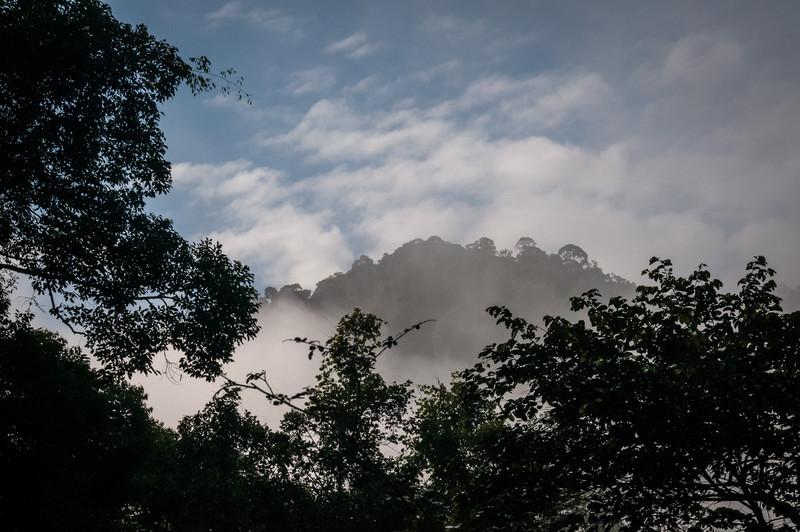 VIEW - Danum Valley-.jpg