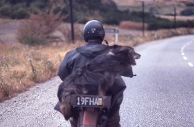 New Zealand - 1979